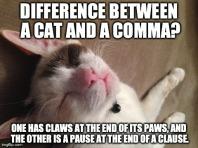 haha!! Did you get the pun?